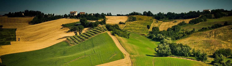 Paesaggio delle colline romagnole